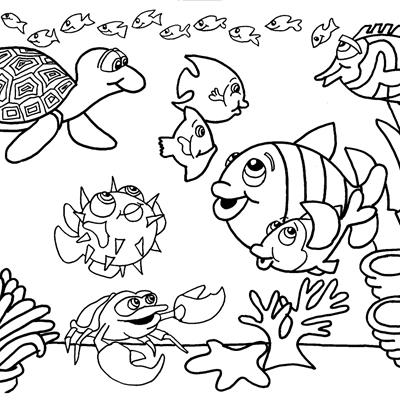 Desenhos Para Colorir Crescer E Saber Escola De Educação